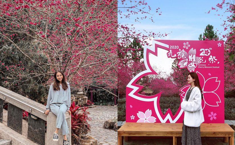 九族櫻花祭 | 2020春暖花開日月潭櫻花攻略 (最新花況LIVE更新中) - 最佳賞櫻時間、拍照地點、櫻花地圖