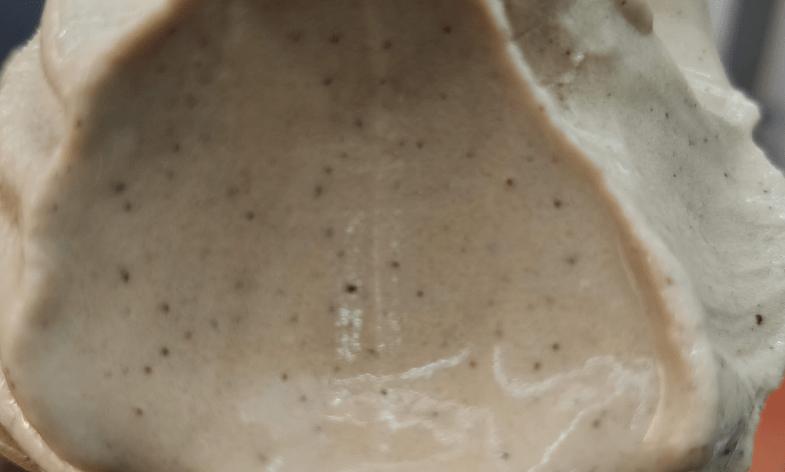 日月潭紅茶店-翻茶-霜淇淋中的紅茶原葉顆粒
