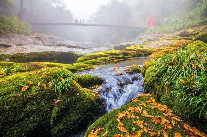 溪頭住宿 |杉林溪森林生態渡假園區 石井磯