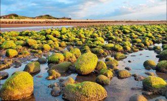 苑裡西平里海邊綠石槽,景致宜人。(記者蔡政珉攝)