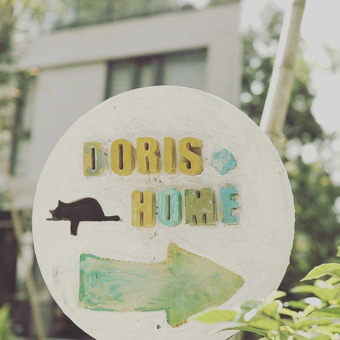 日月潭特色民宿 | 朵麗絲的家Doris Home