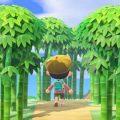 動物森友會竹子島攻略 | 用竹子打造阿里山竹林小徑