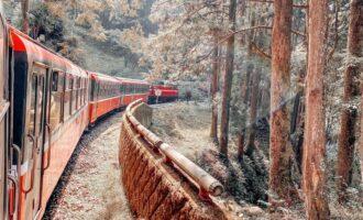 阿里山小火車@shih_su
