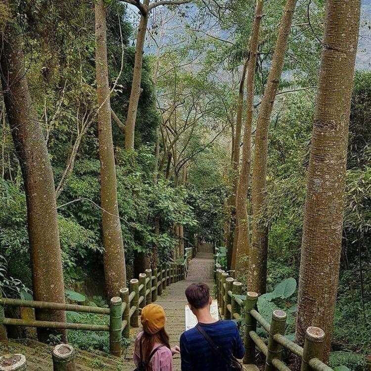鳳凰谷鳥園生態園區 |偷情亭