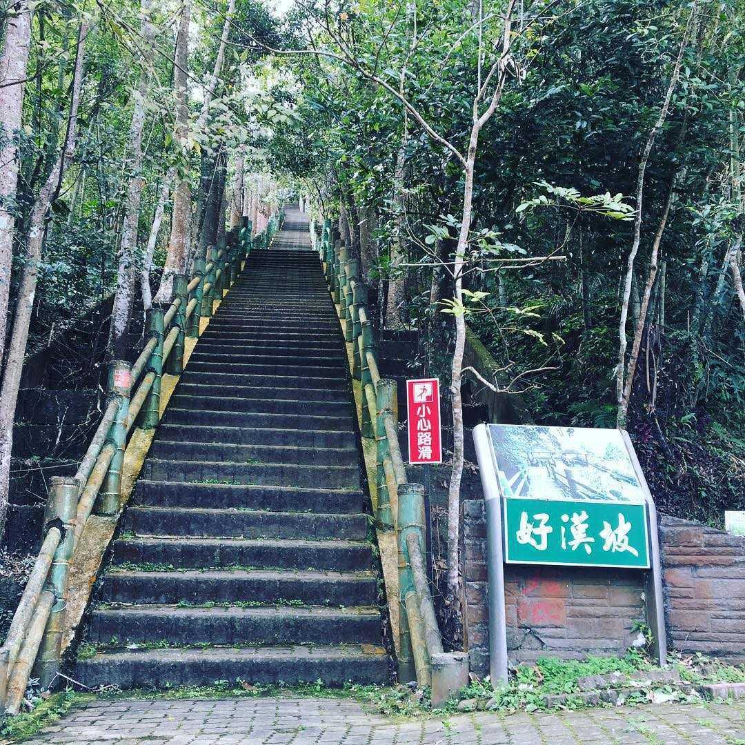 鳳凰谷鳥園生態園區 |好漢坡