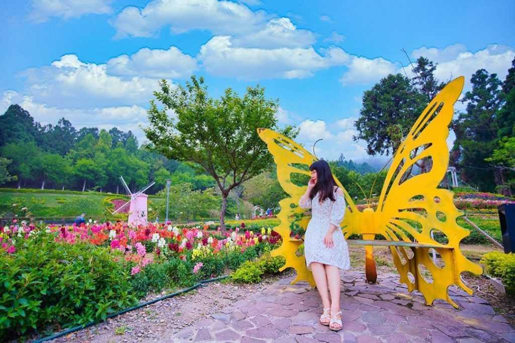 清境小瑞士花園  一起在歐式花園中漫步,夜晚還能露營賞星空、水舞燈光秀。