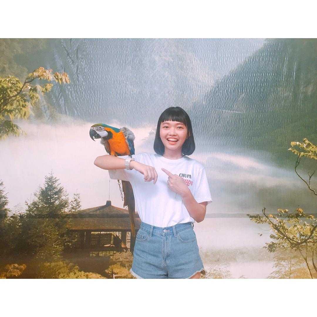 鳳凰谷鳥園生態園區 |金剛鸚鵡