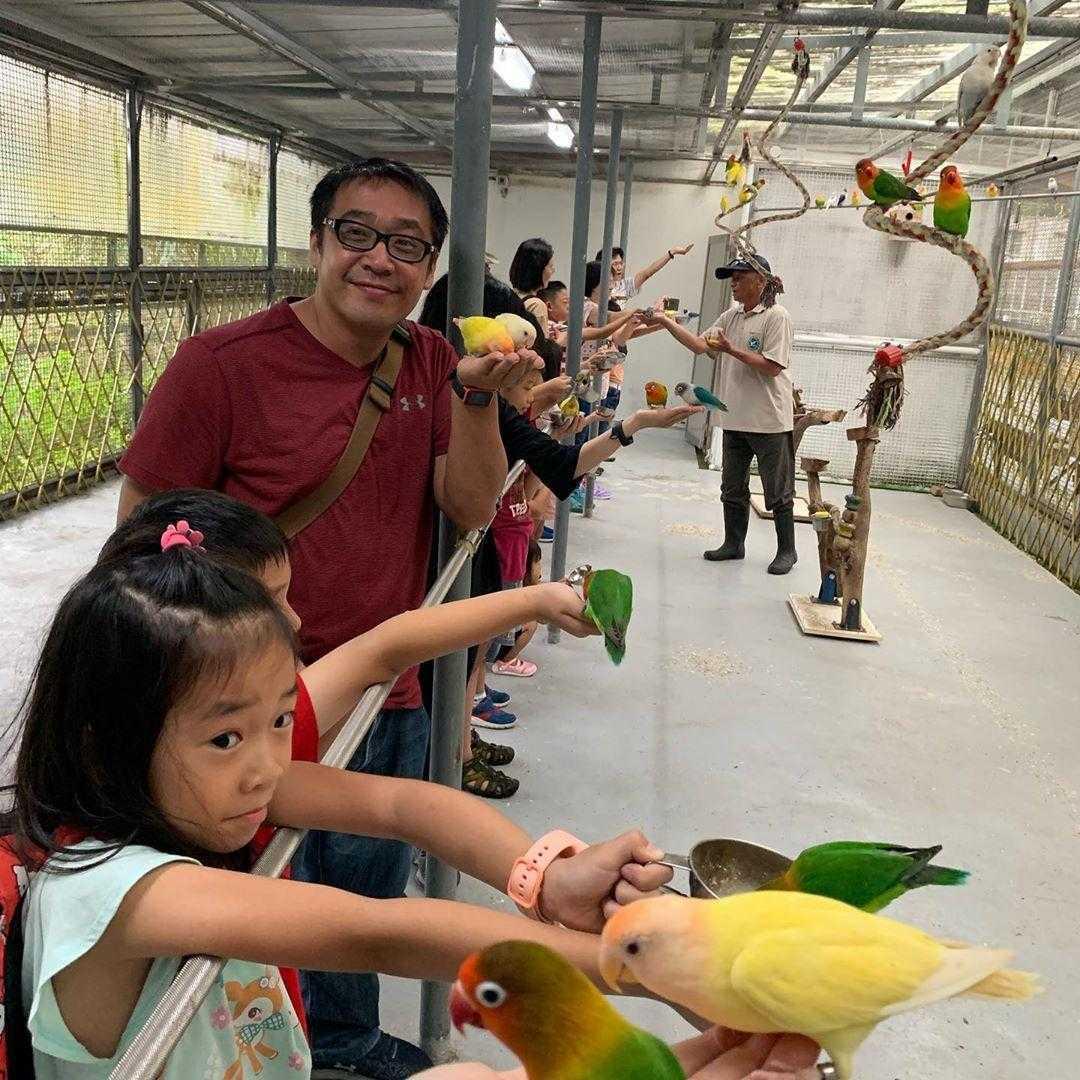 鳳凰谷鳥園生態園區 |親禽互動