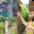新竹熱門景點 |5大熱門必遊新竹景點懶人包|加碼手作體驗:好客好品購票優惠