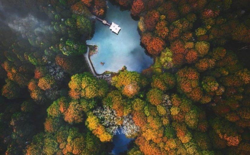 阿里山森遊區景點推薦|特搜 5 個阿里山必遊景點,按下快門紀錄最自然美麗的奇景吧!