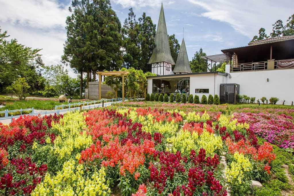 南投旅遊優惠 :清境小瑞士花園門票