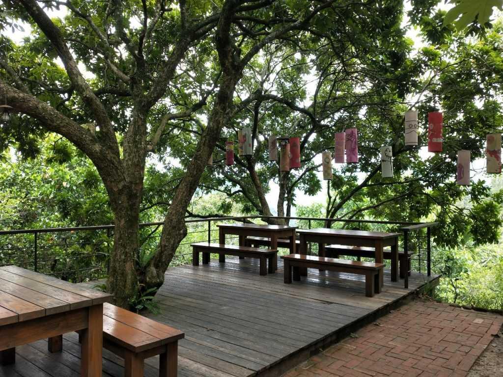 鳥vs人的屋外用餐環境,走的同樣也是森林系自然風格