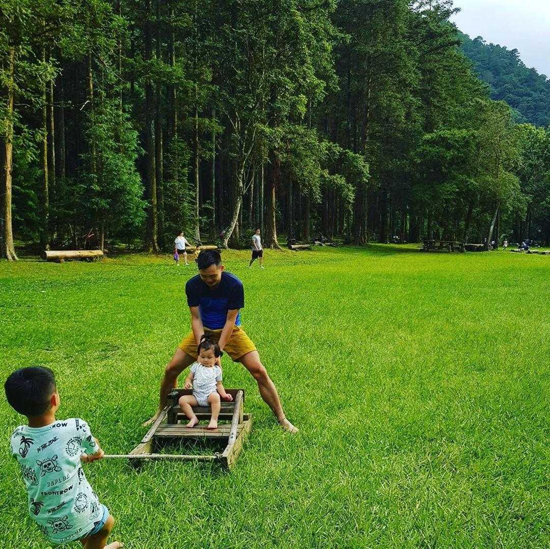 惠蓀實驗林場 |南投清境農場周邊景點,親子旅遊享受森林浴的時光 (一日遊行程推薦)