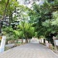 日月潭國家風景區又長大了! 埔里地理中心碑、虎頭山等景點納入