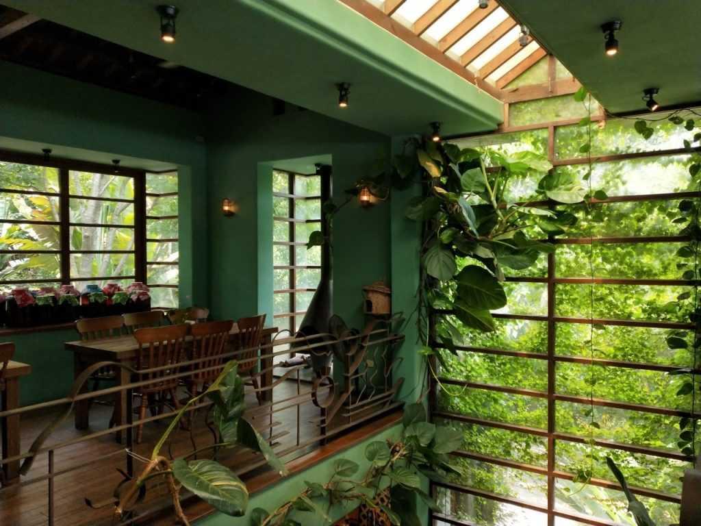 鳥vs人 店內用餐環境,是不是讓你感覺置身叢林中用餐