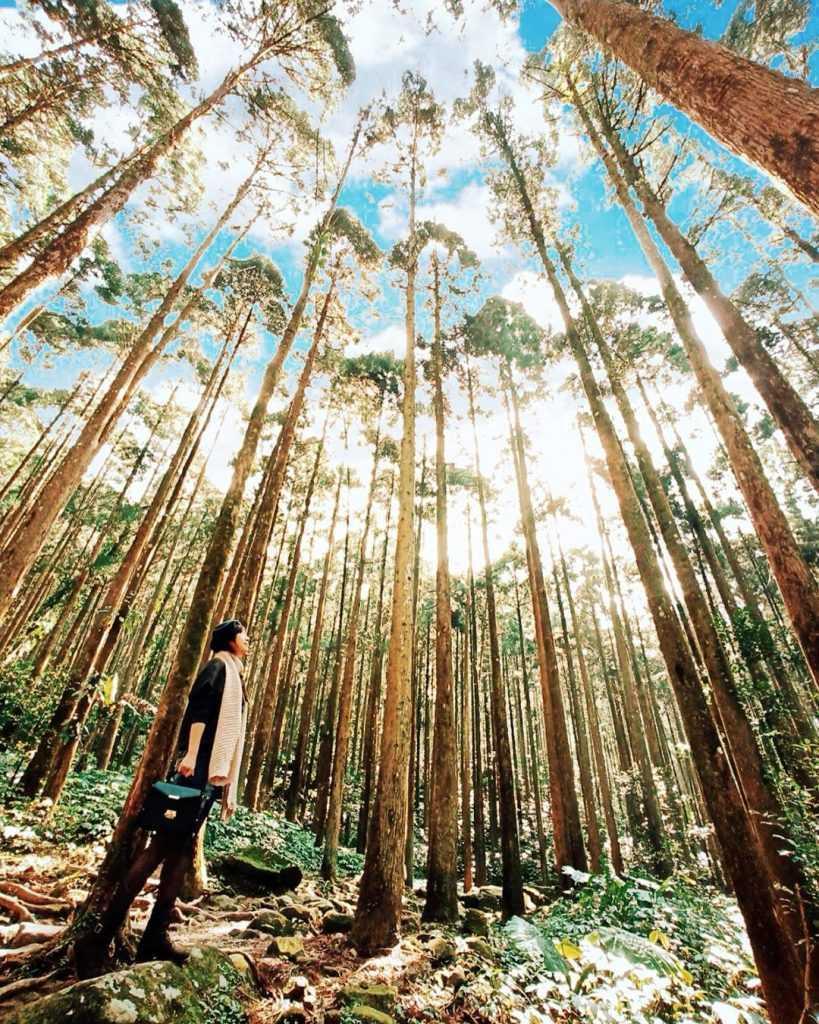 新竹一日遊, 新竹人氣熱門景點, 新竹打卡景點, 新竹旅遊, 新竹景點, 新竹秘境, 新竹秘境景點