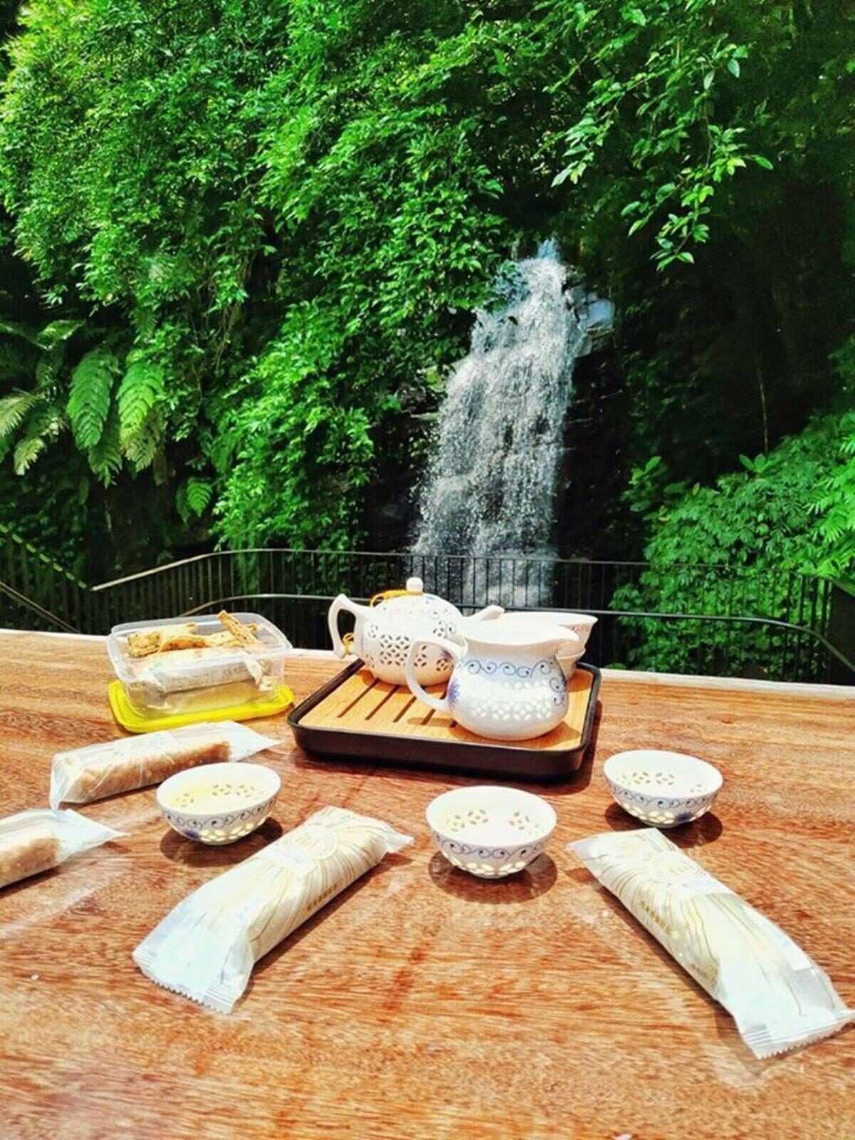 阿里山黃頭鷺季 鷺露茶居