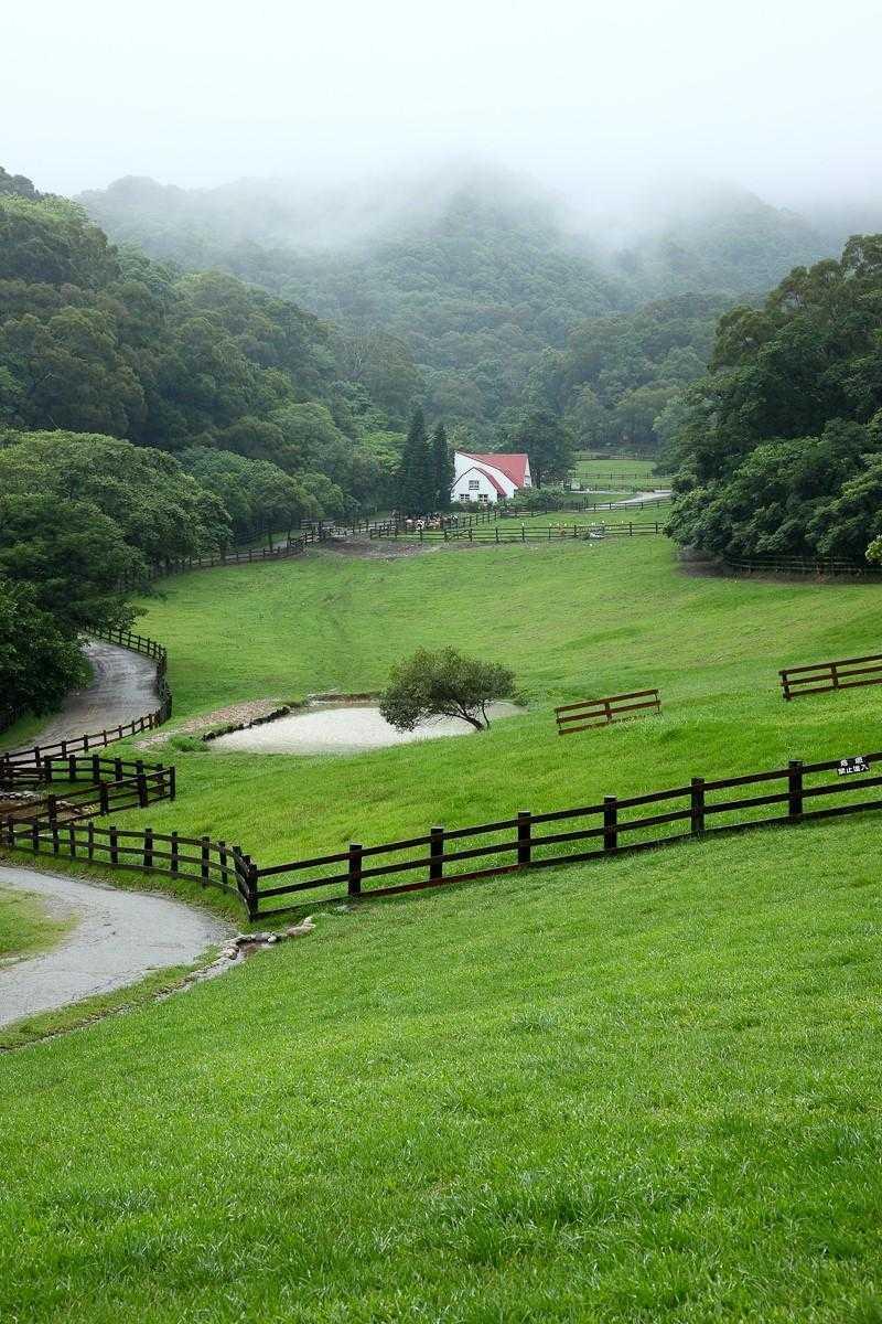 苗栗旅遊景點 「飛牛牧場」一望無際的大草原,很適合悠閒的踏青野餐,帶家人一起享受郊遊樂趣