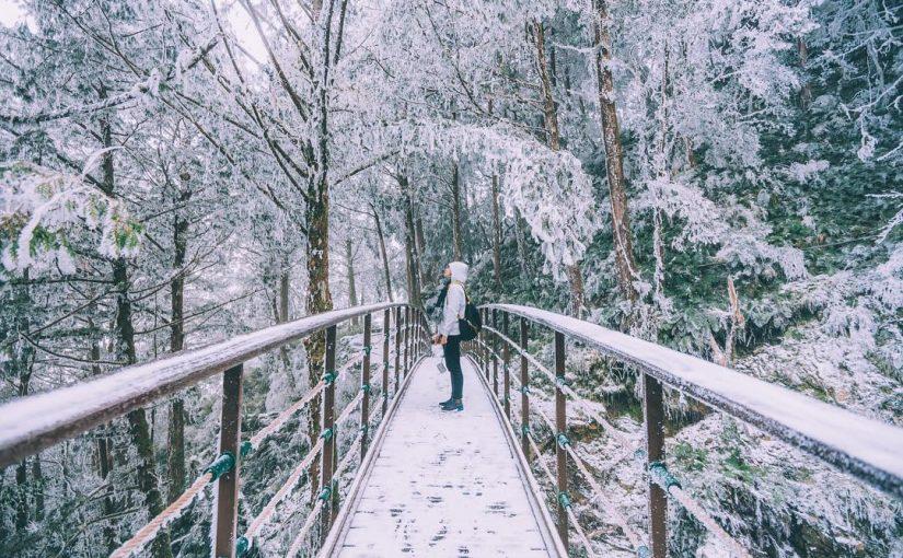 太平山森林遊樂區|宜蘭仙境景點,太平山、蹦蹦車、鳩之澤溫泉【交通、景點、門票、步道推薦】