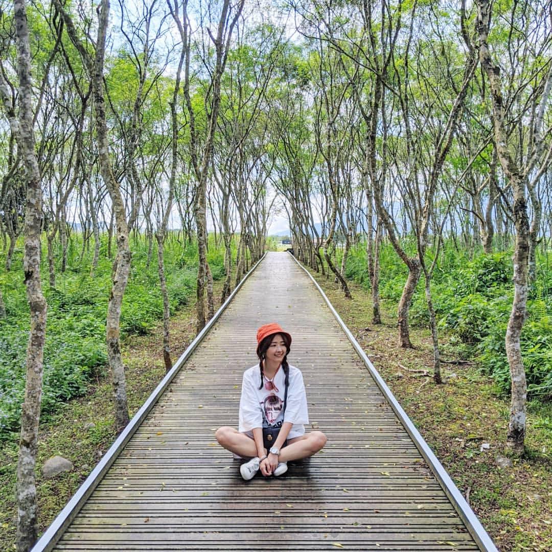 東部森林遊樂區推薦