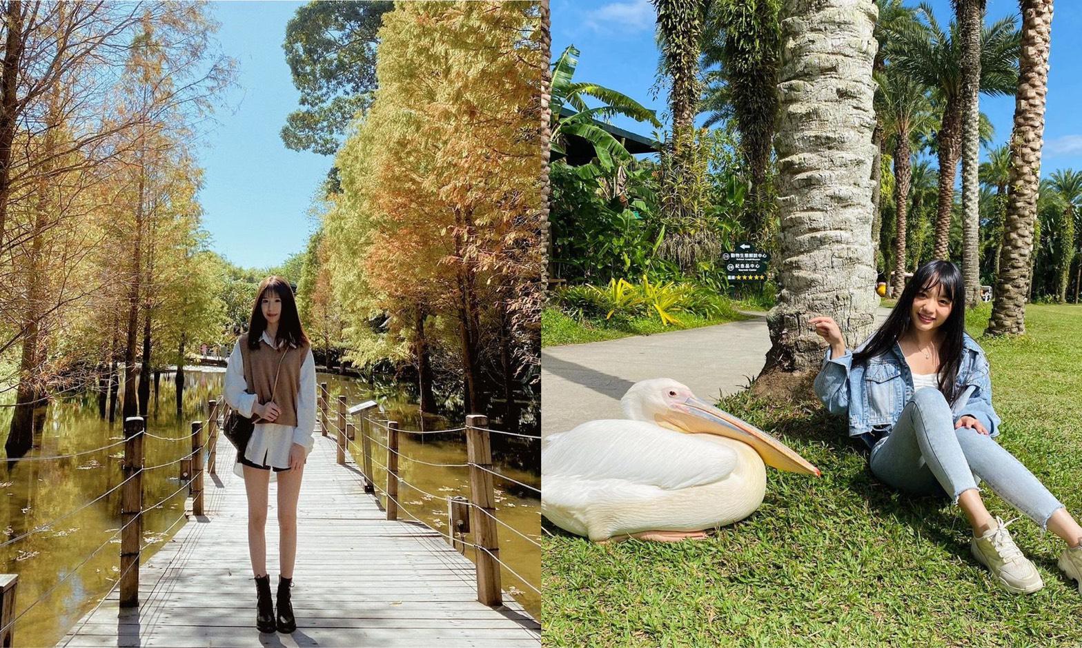 綠世界生態農場 最適合假日出遊的新竹戶外景點(門票優惠/交通指南/必看動物)懶人包