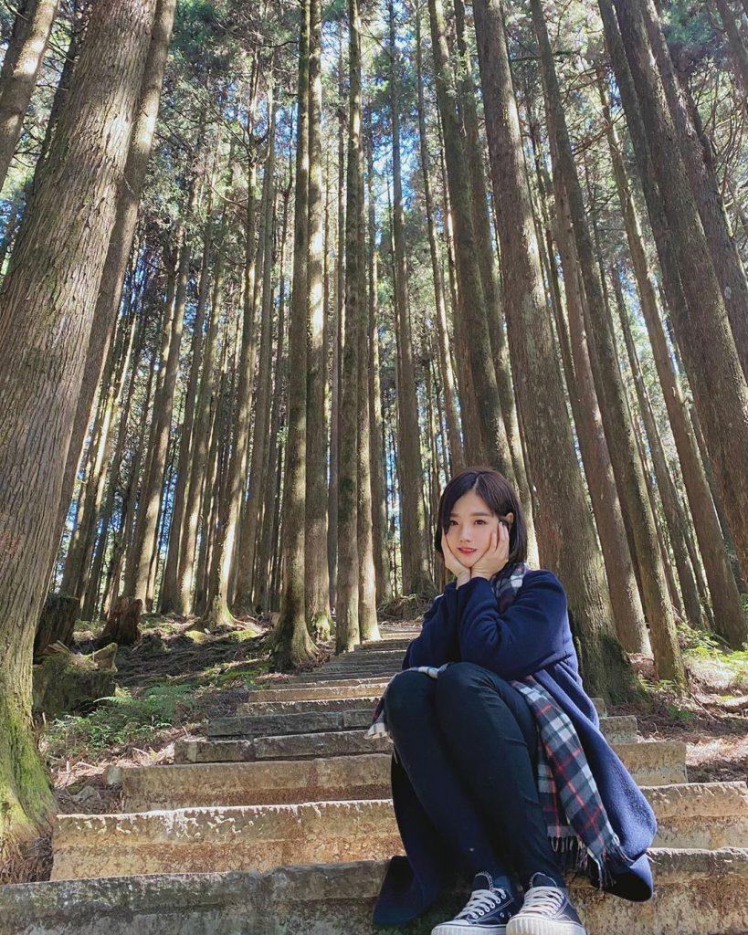 阿里山森遊區景點推薦 |#2 巨木群棧道