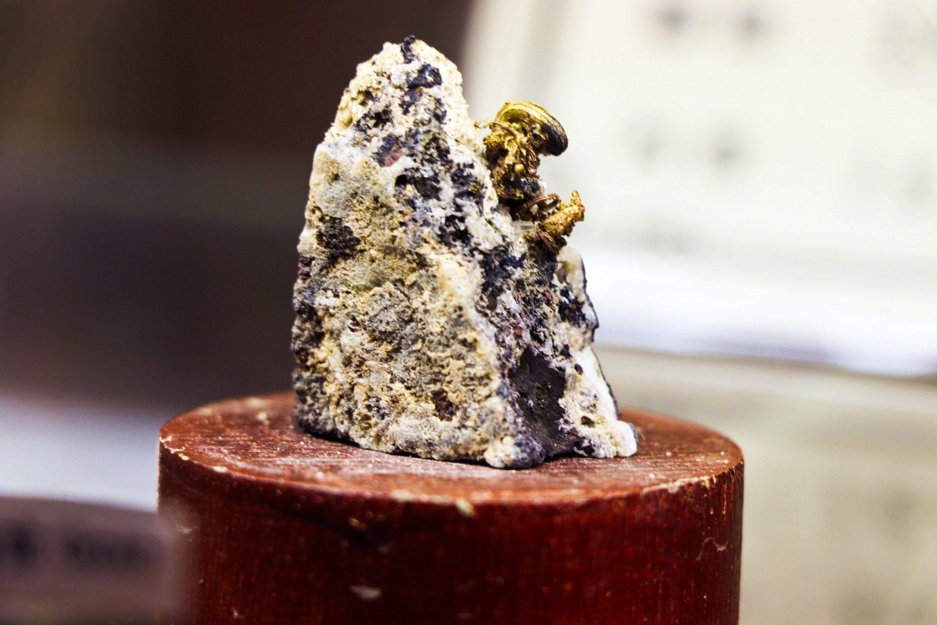 動物森友會挖礦 VS 真正金礦