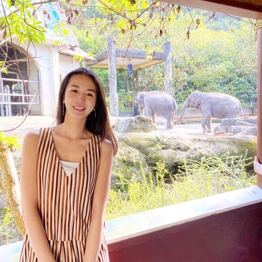 動物園,台北動物園,台北市立動物園,大象