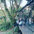 新竹景觀餐廳|推薦10間新竹必去景觀餐廳,一次坐擁湖畔山景、百萬夜景、森林秘境